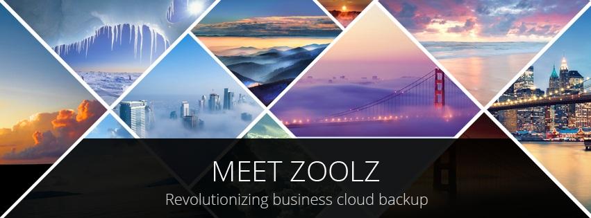 MeetZoolz